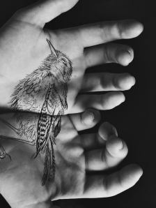 elizabeth blue, bird tattoo,